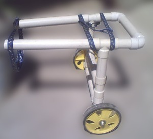 carritolisto1