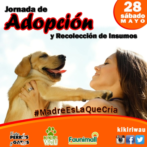 adopcion28mayo copia